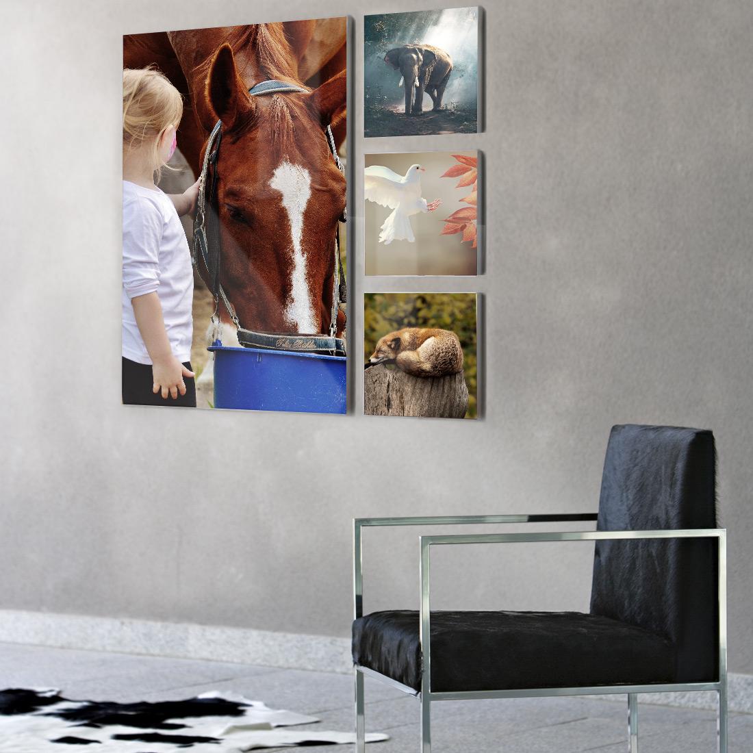 fotografía decoración pared